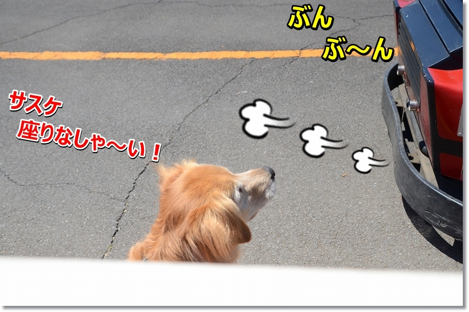 DSC_6710suware~