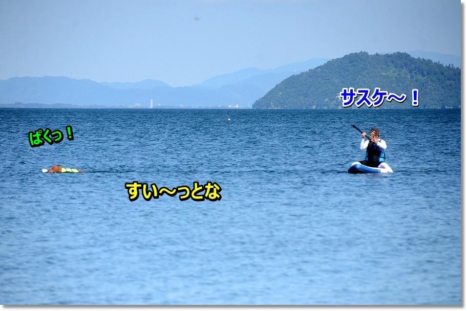 DSC_2091sasuke~
