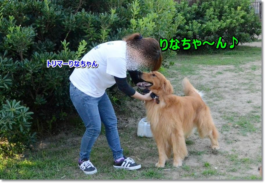 DSC_1583 rinachan