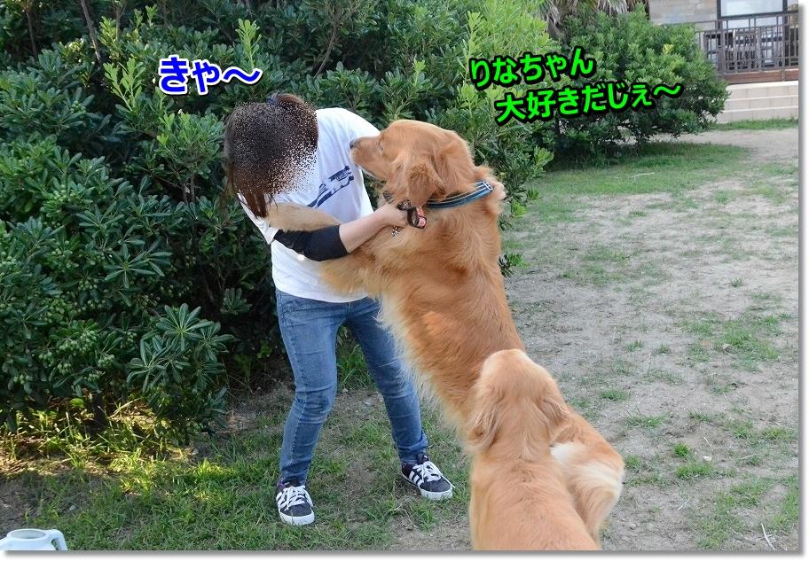 DSC_1587 sukida~ iya~