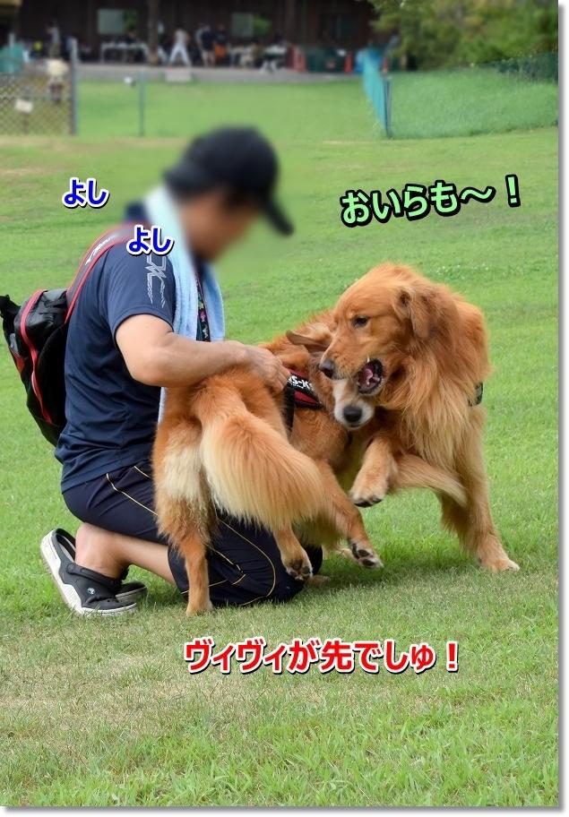 DSC_2615 yakimotiyaki