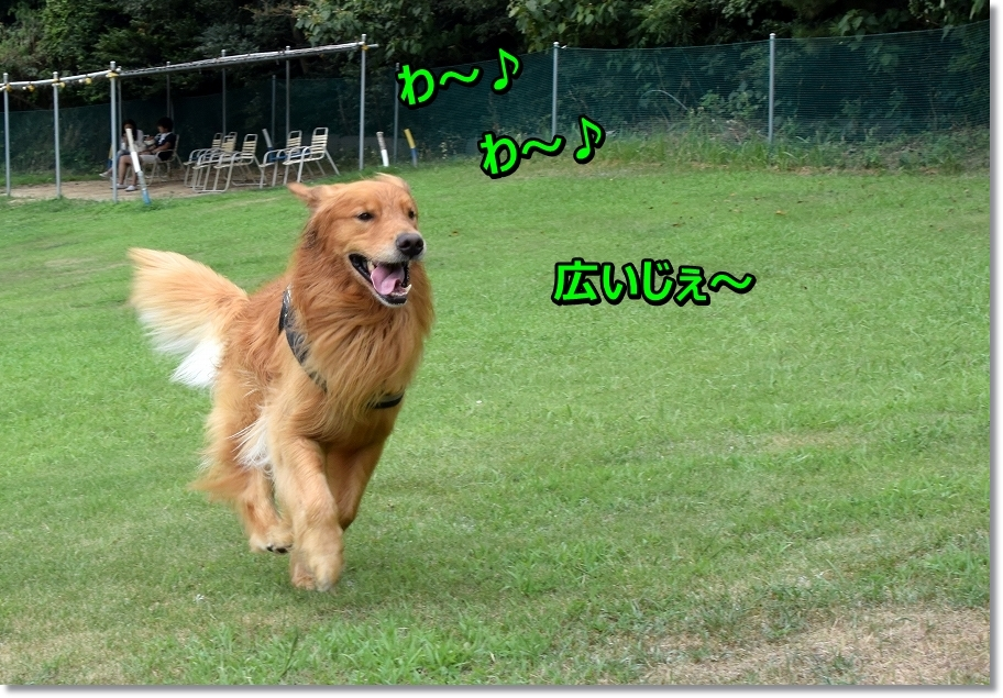 DSC_2610 wa~
