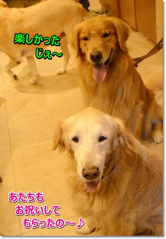 DSC_3482 tanosikata