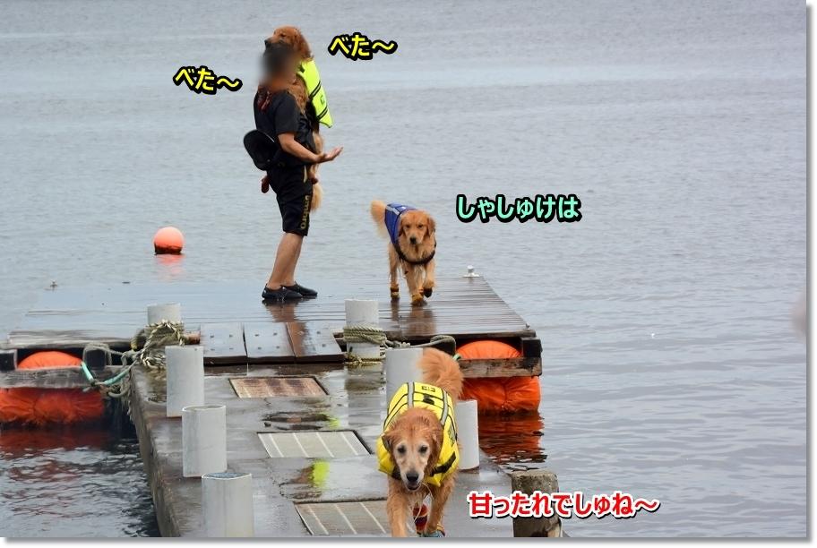 DSC_3848甘えん坊
