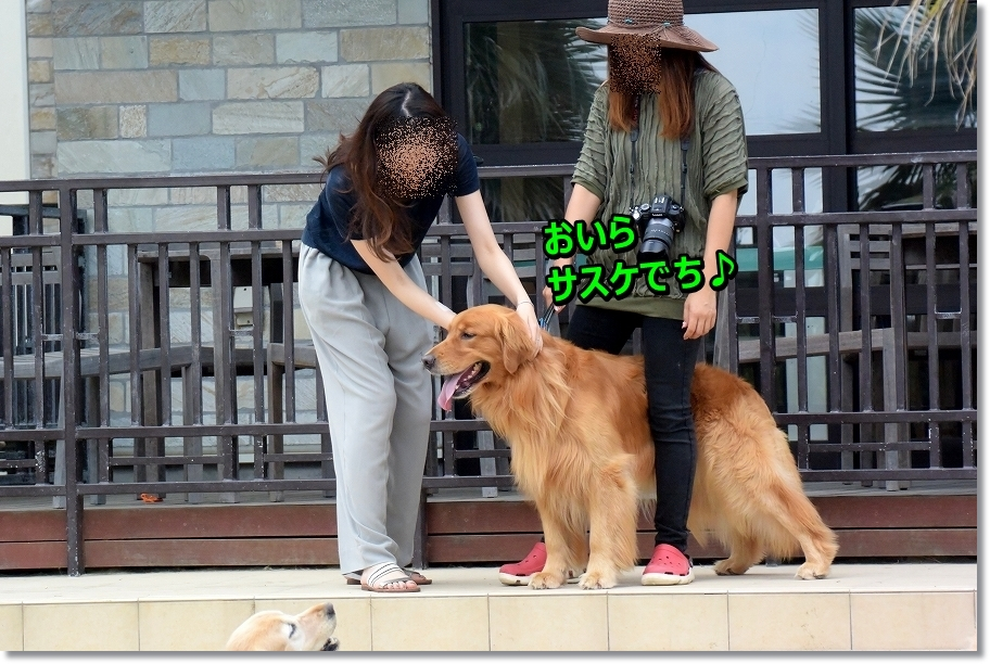 DSC_0122oirasasuke.jpg