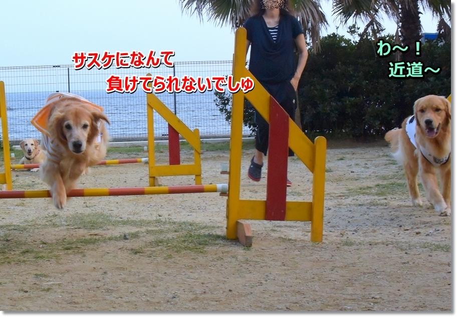 DSC_0745makenai!.jpg