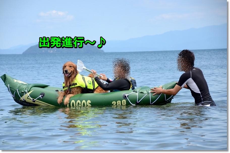 DSC_1789youyaku.jpg