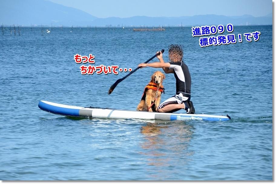 DSC_2015_201607231151299ec.jpg