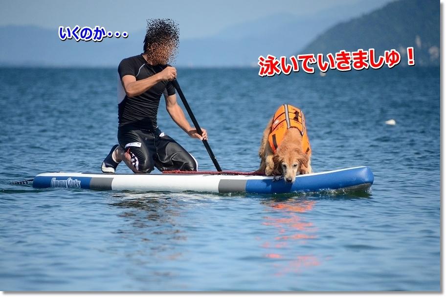 DSC_2025_2016072311522058d.jpg