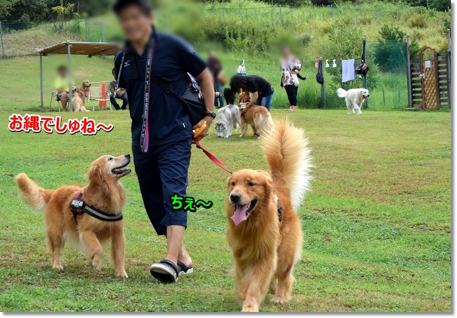 DSC_2418onawa.jpg