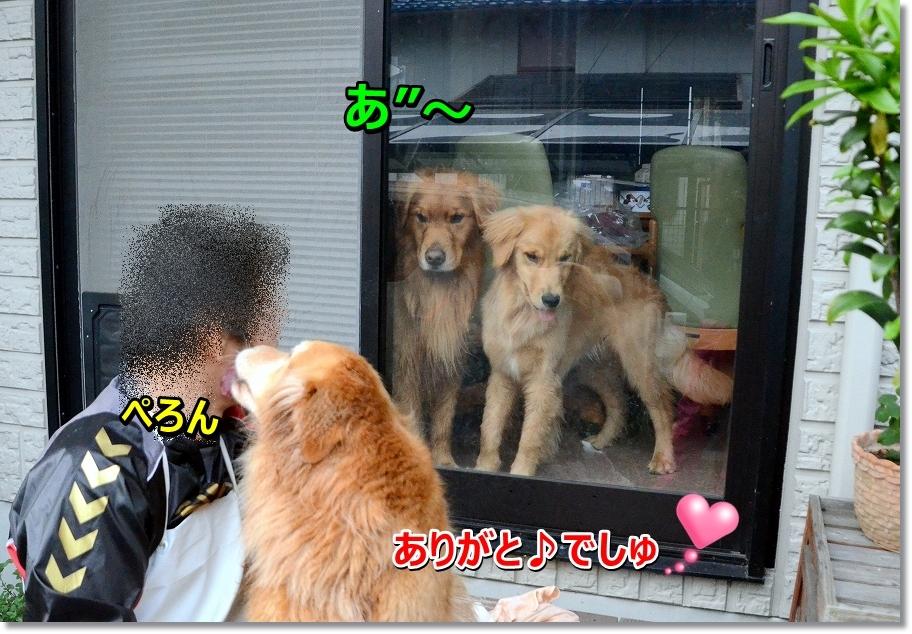 DSC_4899zurui.jpg