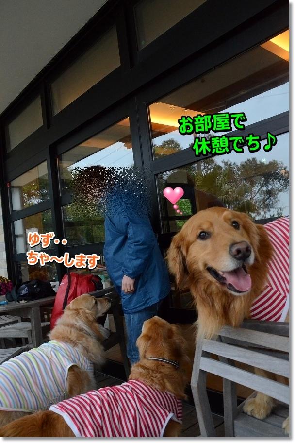 DSC_5140_20160606203109ec8.jpg