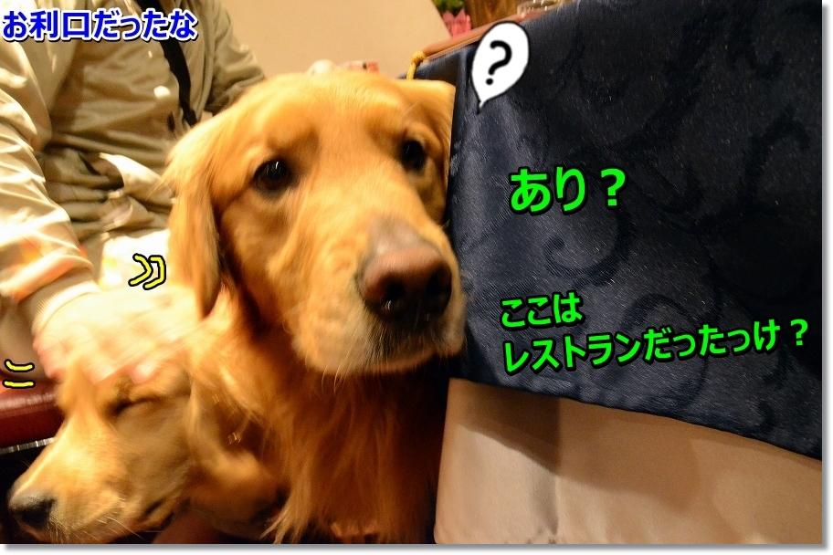 DSC_7141_201605222252390b9.jpg