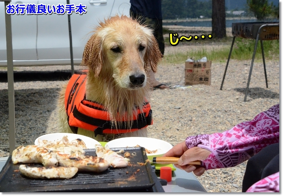 DSC_9800ogyougiii.jpg