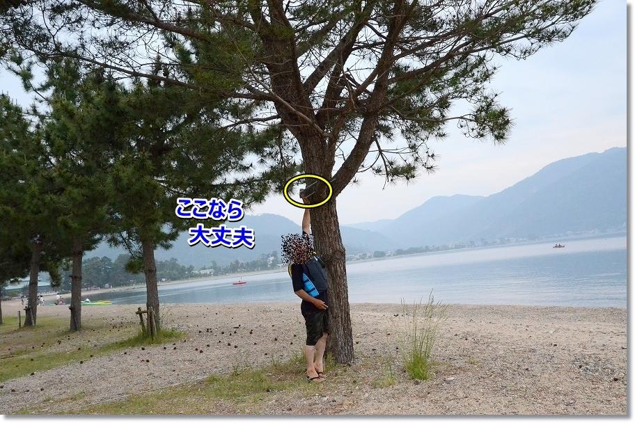 DSC_9920_20160624223007b03.jpg