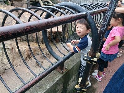 動物園サル