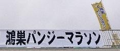 パンジーマラソン⑫ - 垂れ幕