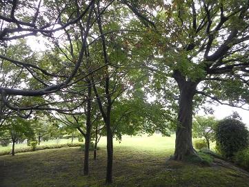 ②石田堤史跡公園