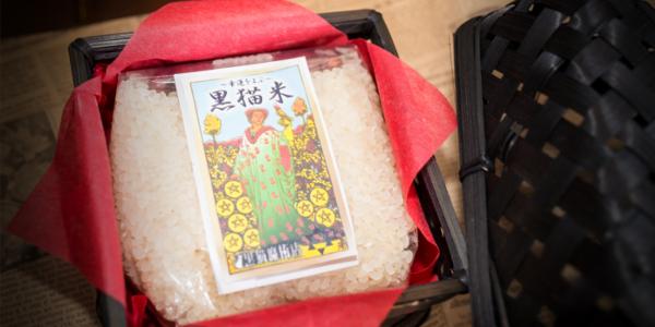 rice_sum11.jpg