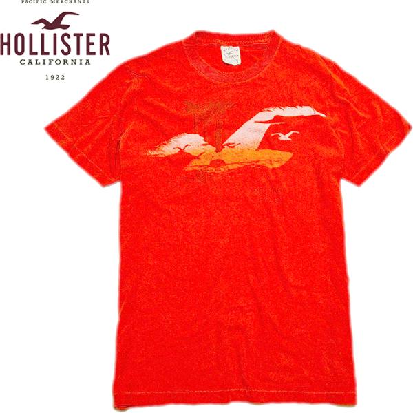 Hollister TeesホリスターTシャツ画像@古着屋カチカチ05