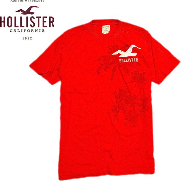HOLLISTER TeesホリスターTシャツ画像サーフ@古着屋カチカチ08