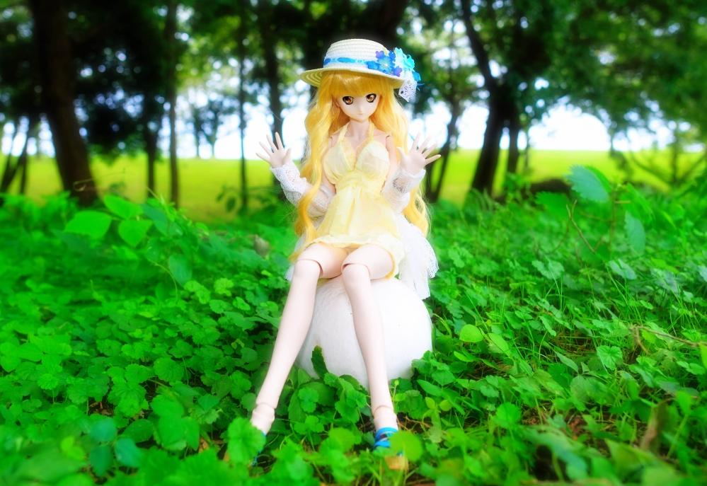 DSC_4571aa.jpg