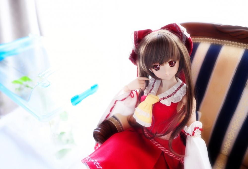 DSC_4591aa.jpg