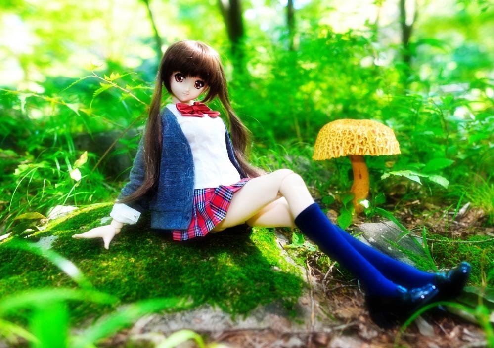 DSC_4660aa.jpg