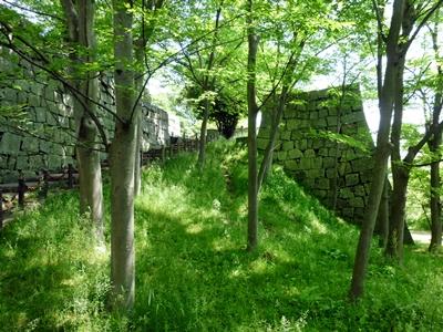 丸亀城_栃の木御門