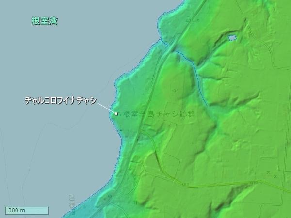 チャルコロフイナチャシ地形図