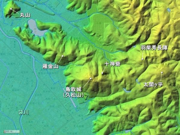太閤ヶ平_地形図