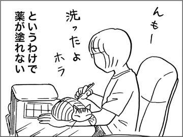 kfc00601-5