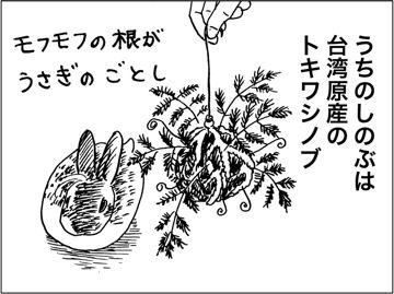 kfc00606-3