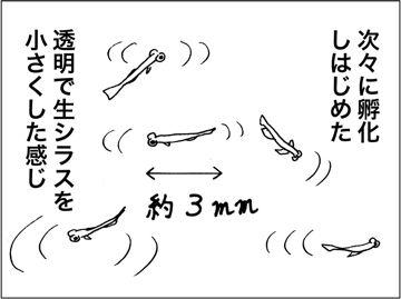 kfc00615-2