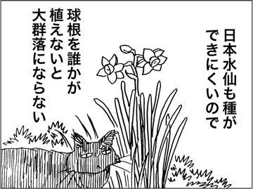 kfc00653-7