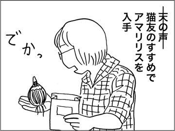 kfc00659-6