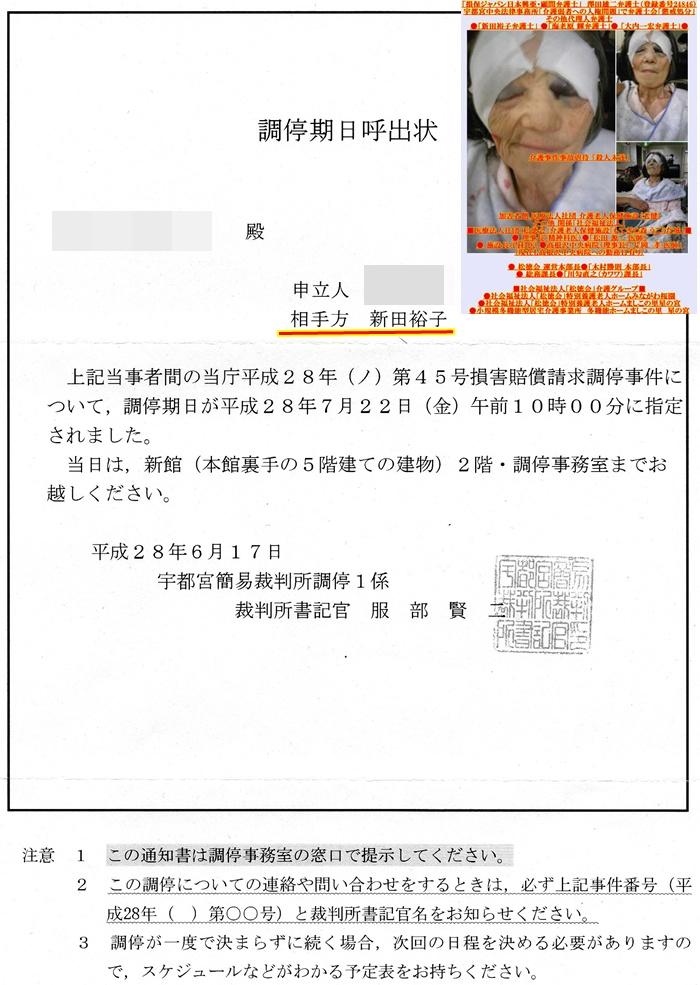 調停 新田裕子弁護士 澤田雄二弁護士 宇都宮中央法律事務所