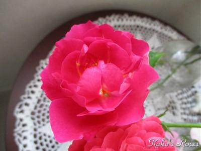 s-IMG_1407k1_20161023151105153.jpg