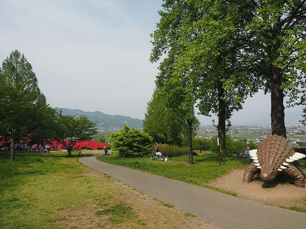 P5020077.jpg