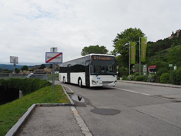 P5240565.jpg