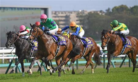 【競馬】ディーマジェスティはナリブの再来。皐月賞は史上最強パフォだった。間違いなく伝説の三冠馬になる!