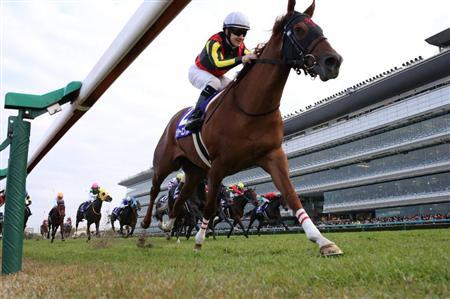 【競馬】メジャーエンブレムはNHKマイルCへ