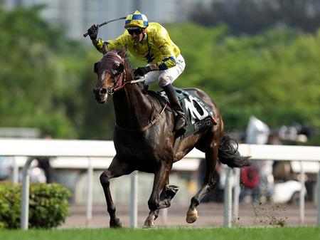 【香港QE2世C】ウェルテル(ワーザー)これ世界最強馬だろ。凱旋門に出ないの?
