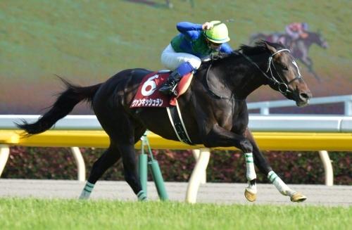 【青葉賞】古馬オープンのメトロポリタンステークスよりレベルが高い件