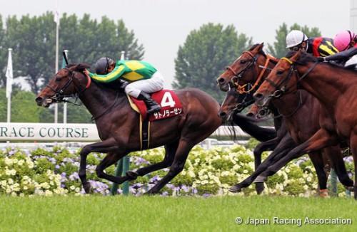 【新潟大賞典】そもそも何でサトノラーゼンが終わった馬扱いされてんの?