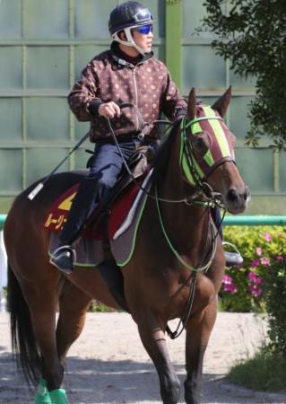 【競馬ネタ】今週のBマイルには北島とかいう奴の馬は出ないようだから俺の出番ではないようだ。