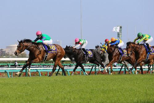 【競馬】凱旋門賞一次登録115頭発表、日本馬11頭、モーリスはなし