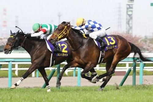 【オークス】第77回優駿牝馬(オークス)(GⅠ) part6