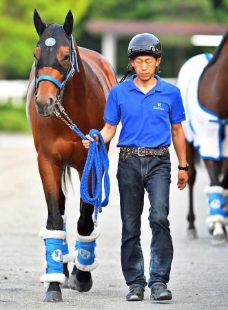 【日本ダービー】はっきり言う。サトノダイヤモンドは史上最強馬である