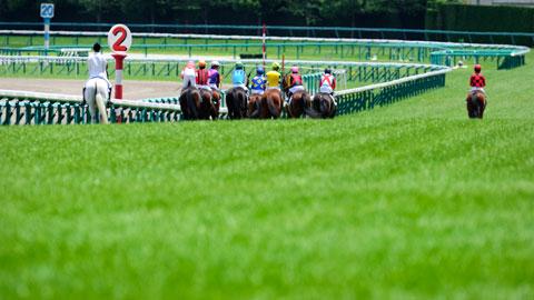 【競馬】糞つまらない夏競馬を盛り上げる方法をJRAに提案